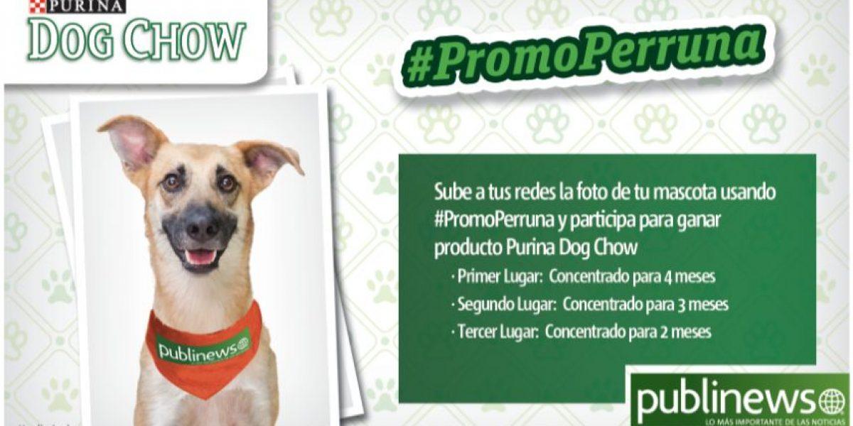 Ganadores de la #PromoPerruna