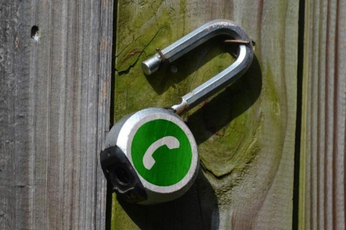WhatsApp solo consiguió una estrella de cinco posibles en relación a la protección de datos del usuario Foto:Tumblr