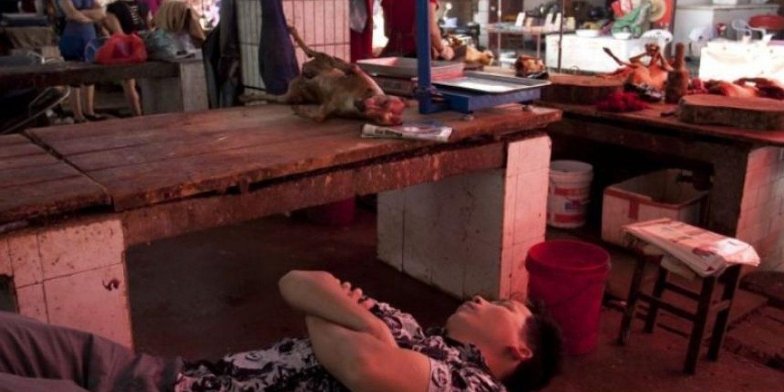Se lleva a cabo en Yulin al sur de China. Foto:AFP