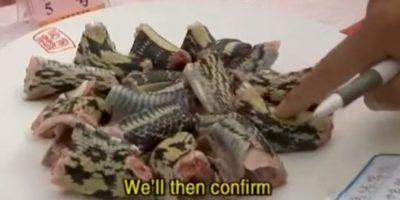 En este evento se preparan peces, serpientes, ranas -entre otros animales- y el ganador es quien mantenga vivo a su animal después de servir el plato. Foto:Vía Youtube