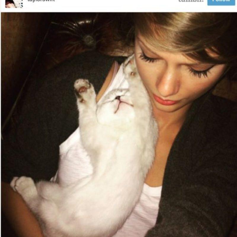 1. Taylor Swift es perfecta porque aparte de ser bella, famosa y rica, ama los gatos. Foto:vía Tumblr/taylorswift