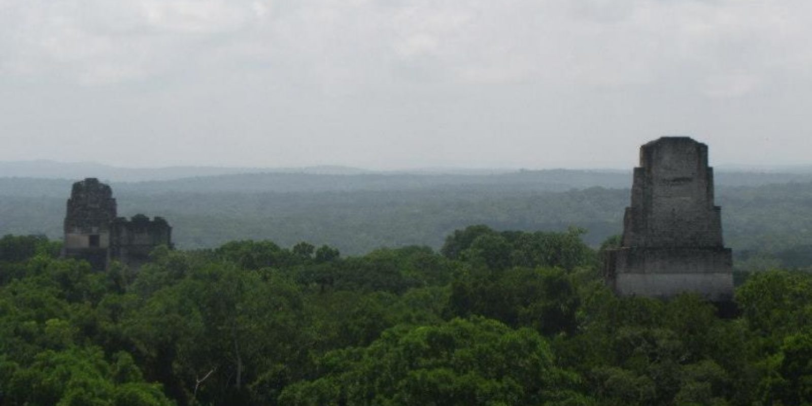 Reserva de la Biosfera Maya Foto:Conap
