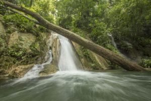 Reserva Protectora de Manantiales Cerro San Gil Foto:Conap