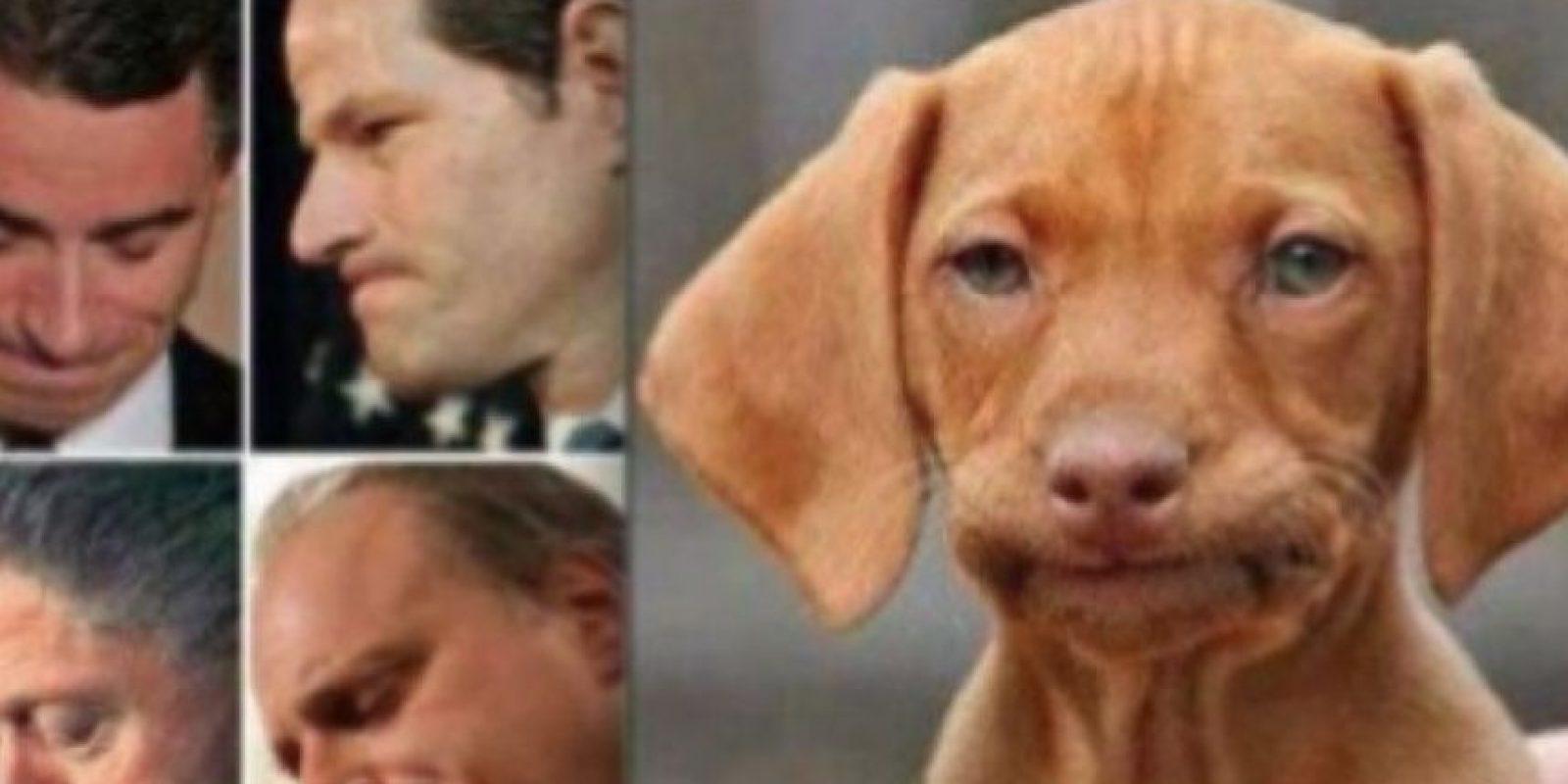 4. Con cara de desaprobación o resignación Foto:Know Your Meme