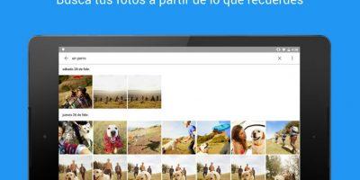 Esto gracias a la inteligencia artificial implementada en la app Foto:Google