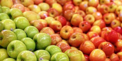 3. La cáscara de manzana contiene un antioxidante llamado quercetina, el cual ayuda al buen funcionamiento pulmonar. Foto:Wikimedia