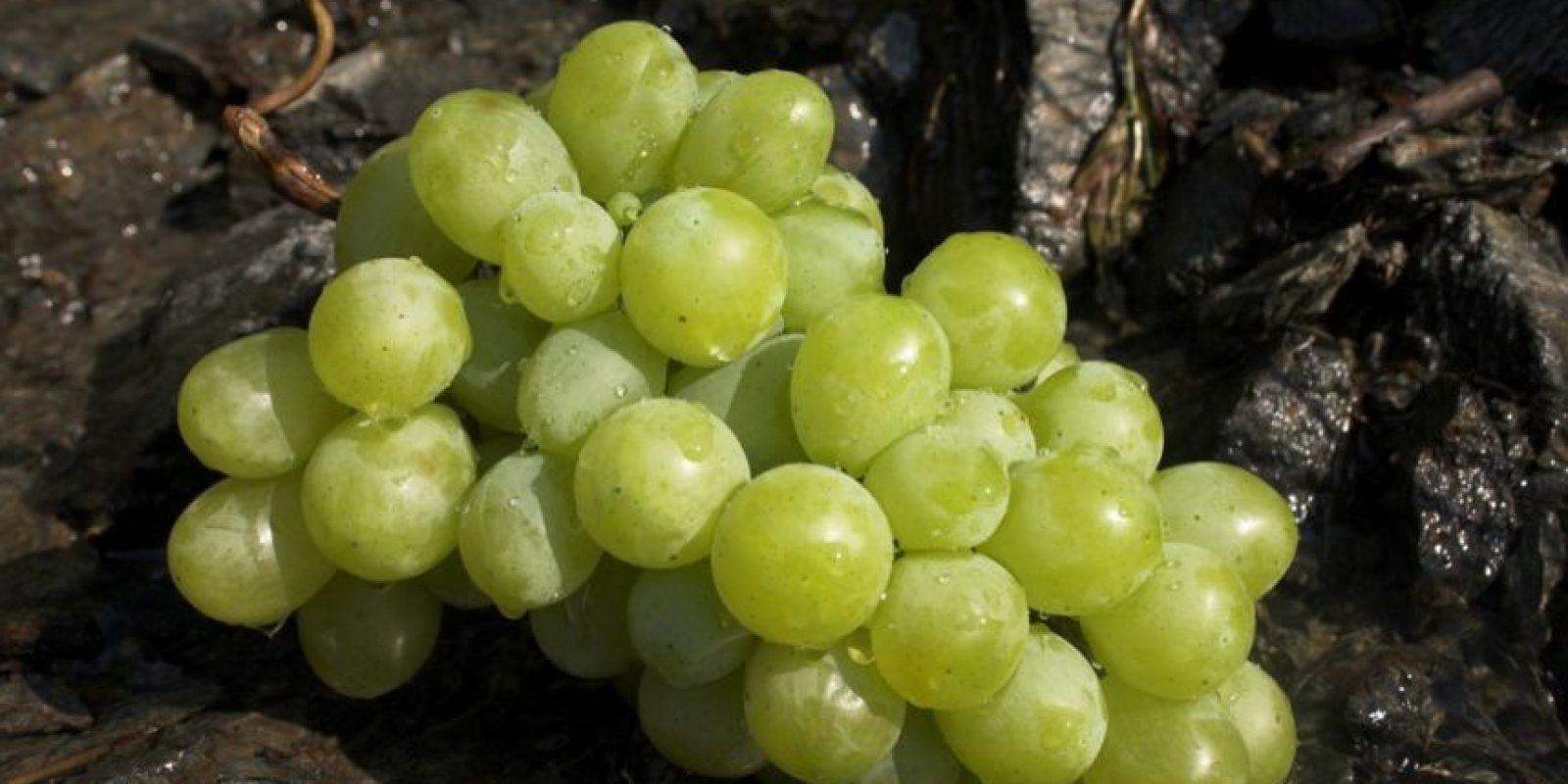 5. El resveratrol de la cáscara de uva ayuda a disminuir los niveles de colesterol y previene el envejecimiento prematuro. Foto:Flickr