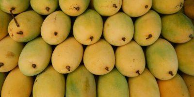 10. La nutrióloga de SAS expuso que todas las cáscaras blandas de las frutas, como las que mencionamos arriba, deben consumirse, ya que es ahí donde se concentran más sus propiedades. Foto:Wikimedia