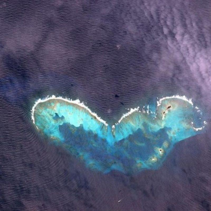 "Imagen de una ""mariposa"" captada en el Golfo de México Foto:Instagram.com/stationcdrkelly"