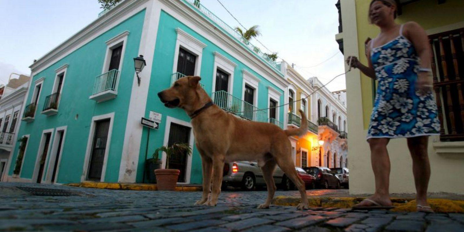 De hecho, ante el anuncio de insolvencia, la Casa Blanca indicó que no planea un rescate para la isla. Foto:Getty Images