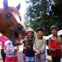 Este caballo quería salir en la foto Foto:Know Your Meme