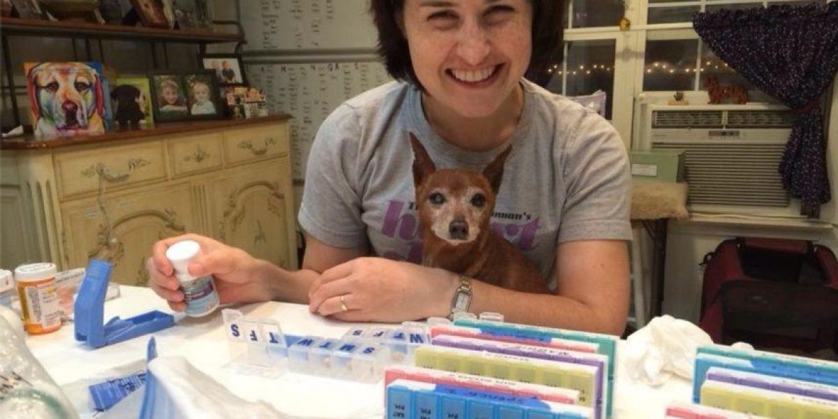 VIDEO: Conozcan la asombrosa casa de retiro para perros