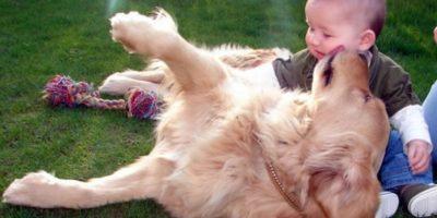 El mejor momento del día para estos dos amigos Foto:Pinterest