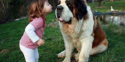¡Beso, beso! Foto:Pinterest