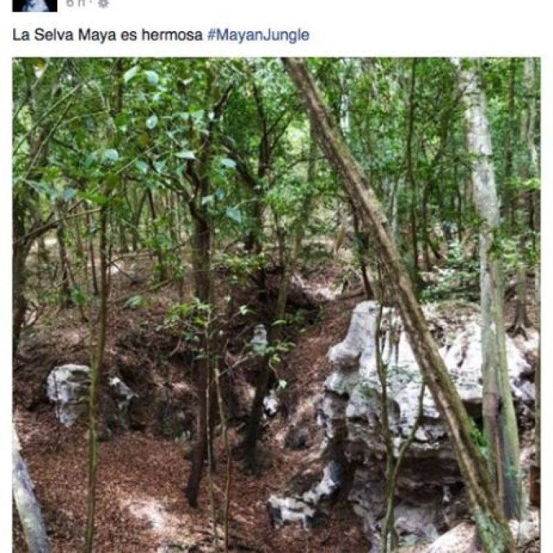 El incidente ocurrió en la selva del estado de Quintana Roo, en México Foto:vía instagram.com/dashberlin