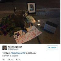 Eran las 10:46 PM y el mapache seguía ahí, rodeado de flores, veladoras y mensajes de apoyo. Foto:Twitter.com/KrisReports