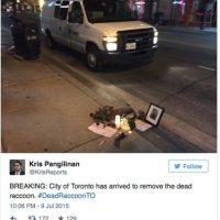 Después de las 11 PM, una camioneta de Servicios Animales por fin apareció para recogerlo. Foto:Twitter.com/KrisReports