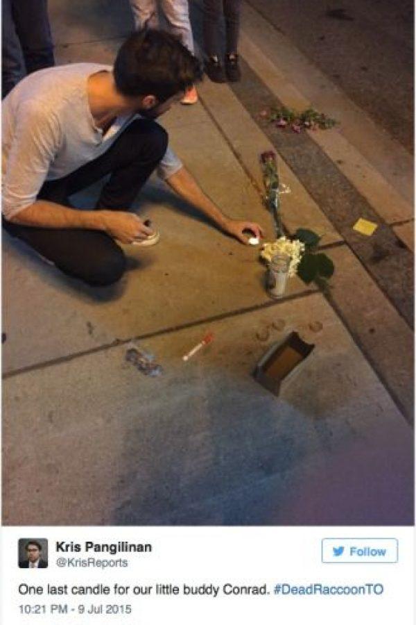 Después de 14 horas, fue removido. En el lugar quedó una ofrenda al mapache ignorado. Foto:Twitter.com/KrisReports