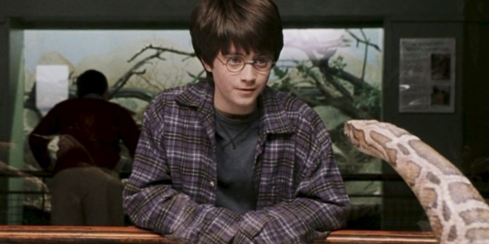 Después de que el Horrocrux en Harry fuese destruido, este jamás pudo volver a hablar Parsel. Foto:vía Warner Bros