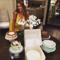 La celebración estuvo llena de comida. Foto:Instagram/SofiaVergara