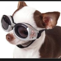O estos lentes… Foto:Pinterest