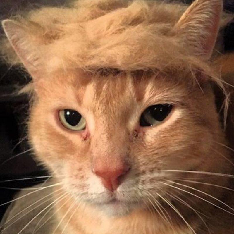EL candidato a la presincia de Estados Unidos, Donald Trump Foto:Vía Instagram