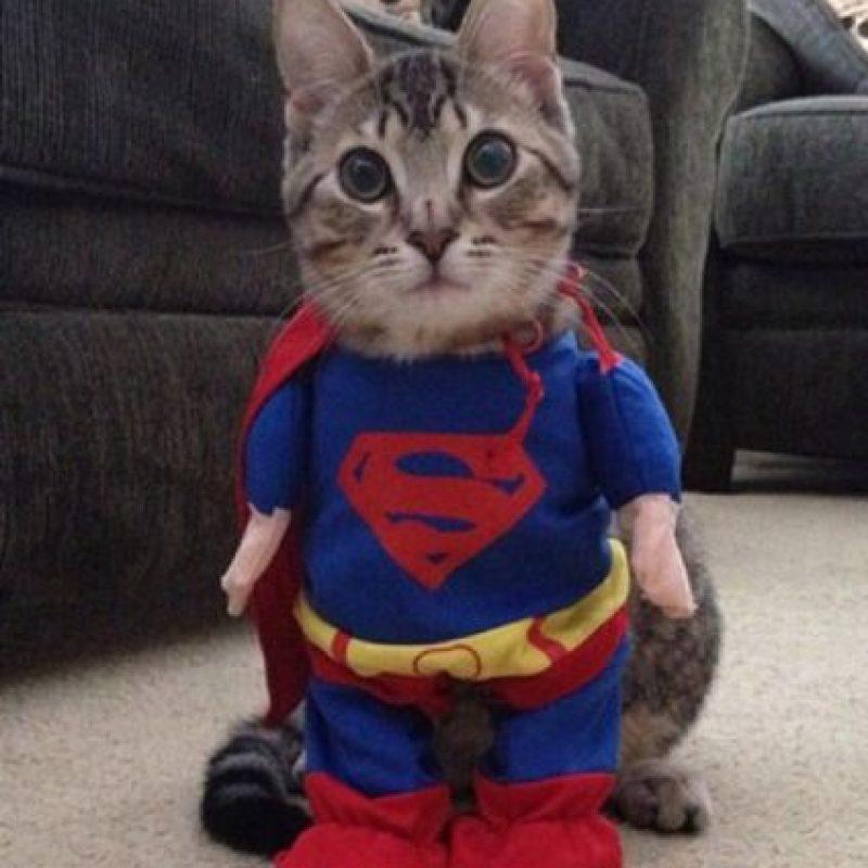 ¡Superman! Foto:Imgur