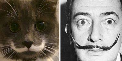 ¡Enorme parecido! Foto:Pinterest