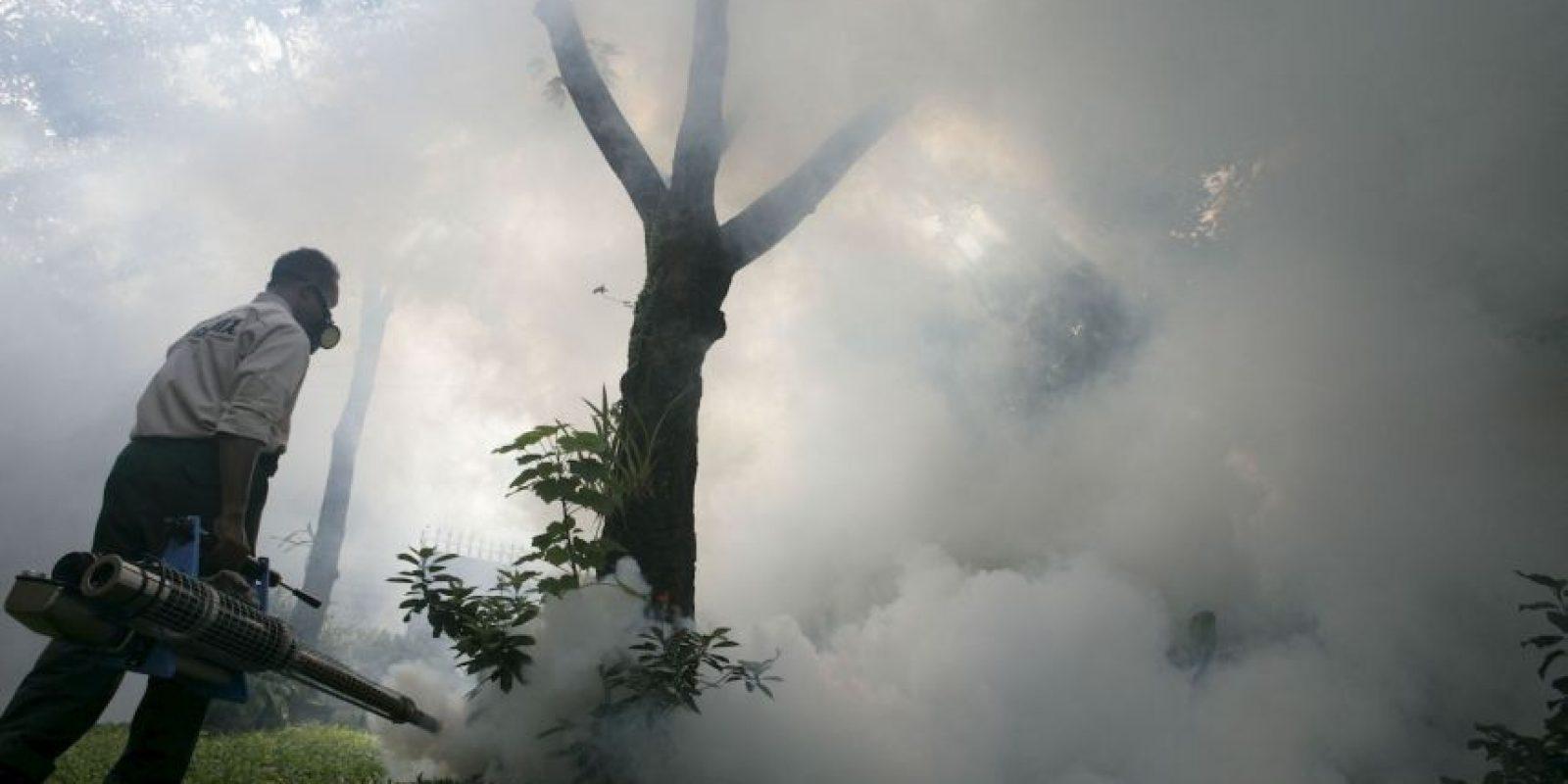 """1. De acuerdo con la enciclopedia médica """"Medline Plus"""", """"la malaria o paludismo es causada por un parásito que se transmite de un humano a otro por la picadura de mosquitos anofeles infectados"""". Foto:Getty Images"""
