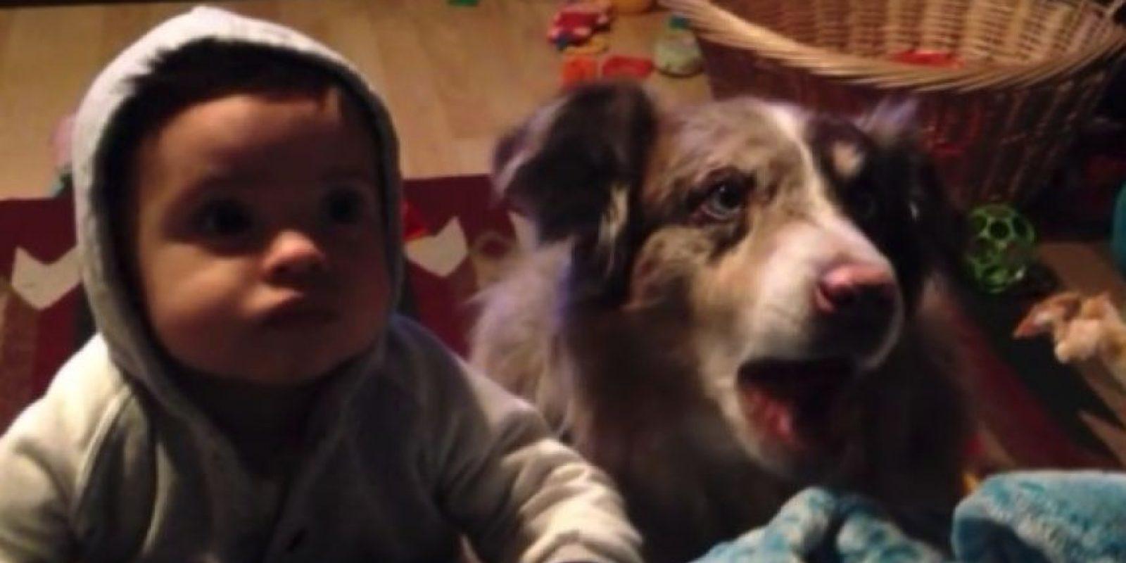 """2. Este perro pudo decir """"mamá"""" antes que el hijo de su dueña Foto:Vía Youtube/Sam Giovannni"""