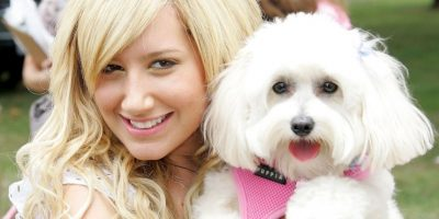 """Ashley es famosa por interpretar a """"Sharpay"""" en """"High School Musical"""" Foto:Getty Images"""