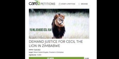 Buscan justicia con peticiones. Foto:vía Twitter