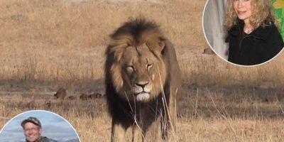 Mia Farrow pone en peligro la vida del asesino del león Cecil