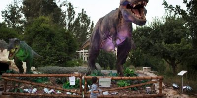 Réplica de un tiranosaurio en un parque de Israel. Foto:AFP