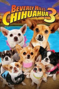 """Beverly Hills Chihuahua 3: ¡Viva la Fiesta!"". Disponible a partir del 1 de agosto. Foto: Walt Disney Studios Home Entertainment"