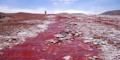La laguna Roja, Chile Foto:Wikimedia