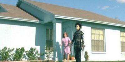 "La casa de la ""Sra. Peg Boggs"". Foto:Reddit/Voodrew"