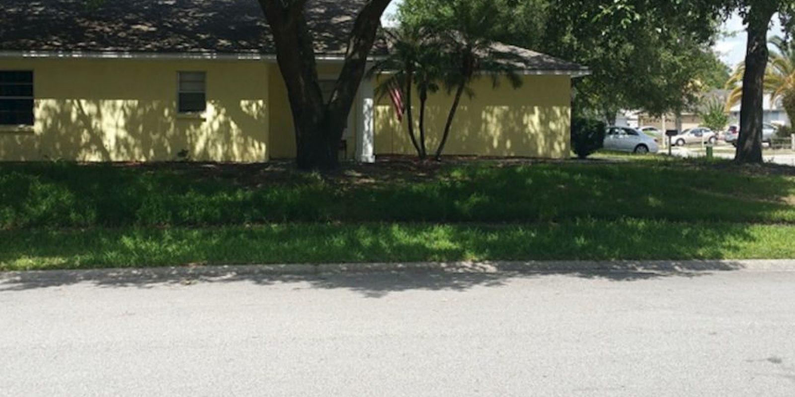 Ahora los árboles ofrecen mucha sombra. Foto:Reddit/Voodrew