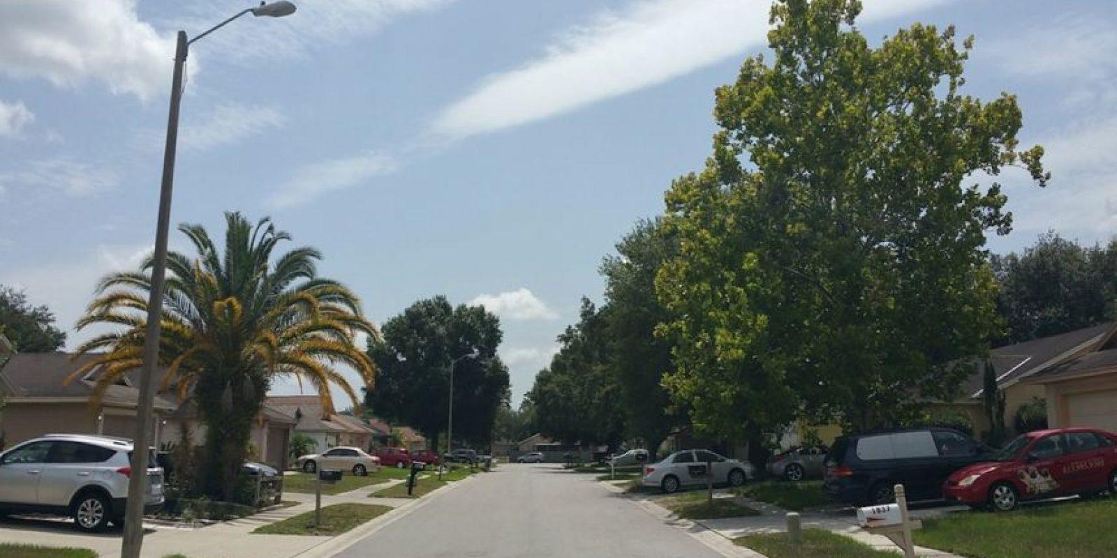 Ahora es una calle llena de árboles. Foto:Reddit/Voodrew