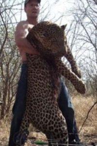 Él ya ha matado otros animales. Foto:vía Twitter