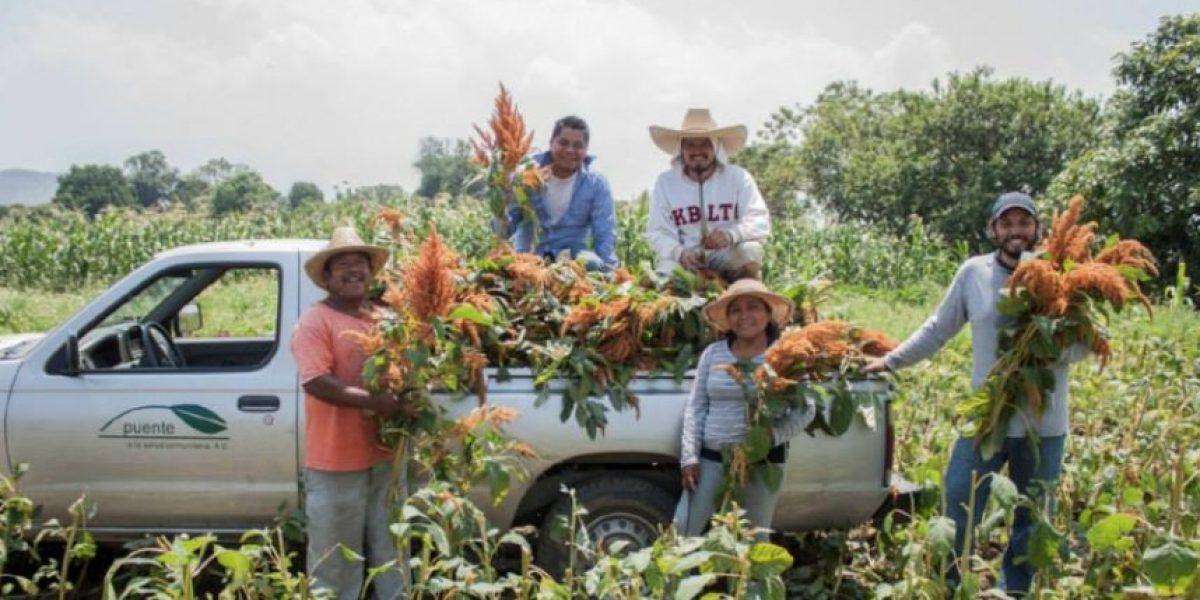 Últimos días para solicitar fondos a la Embajada de Australia en México