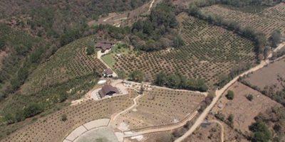 Inicia extinción de dominio de las propiedades del presidente Otto Pérez