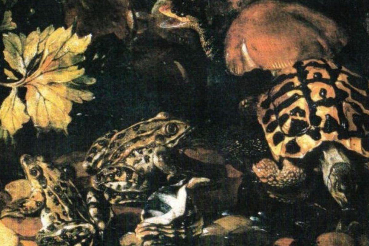 """""""Reptiles"""" Paolo Porpora Foto:Wikimedia"""