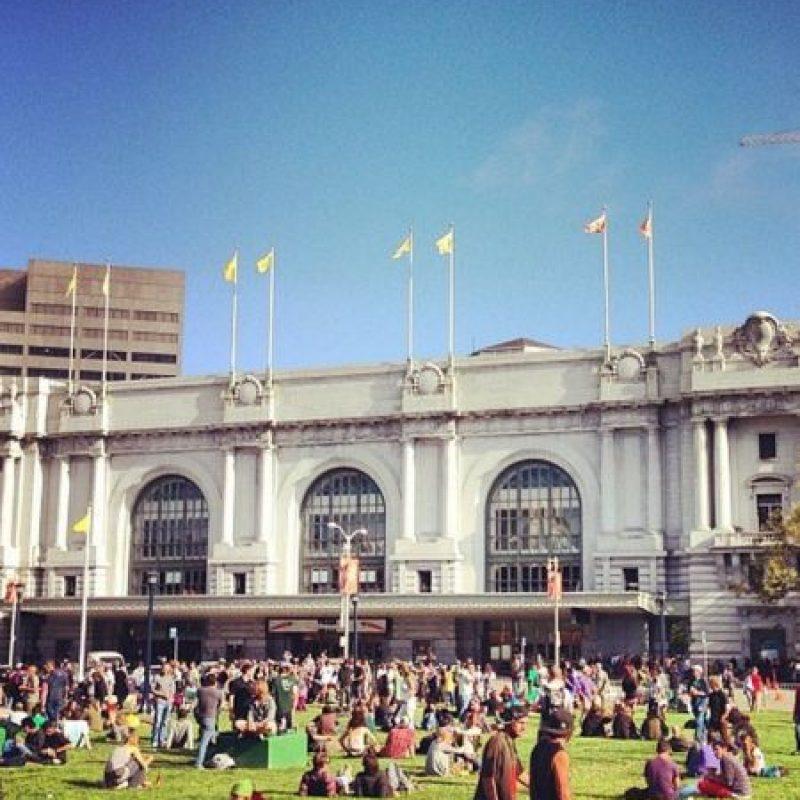 La gente puede esperar sentada en el pasto. Foto:instagram.com/shizzyyoutloud