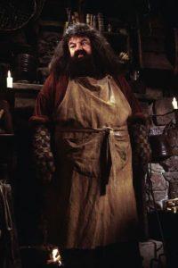 """Gracias a """"Hagrid"""", el actor recibió una nominación en los premios BAFTA. Foto:vía facebook.com/harrypottermovie"""