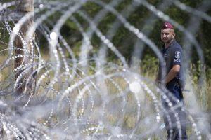 Construcción del muro entre Hungría y Serbia. Foto:Getty Images