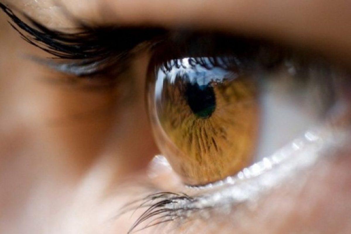 3. Ojos amarillos Foto:Pixabay