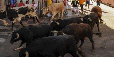 El encierro es una costumbre taurina tradicional en las fiestas de numerosos pueblos y algunas ciudades de España. Foto:AFP