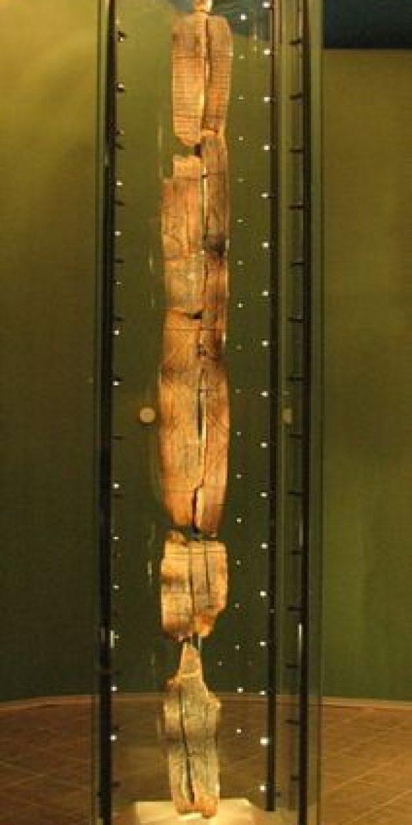 Se cree que tendría 11 mil años de antigüedad Foto:Wikimedia.org