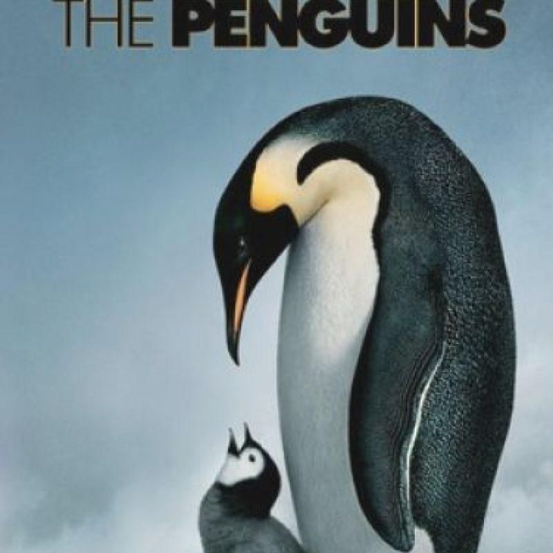 """""""La marcha de los pingüinos"""". Disponible a partir del 1 de septiembre. Foto:National Geographic"""